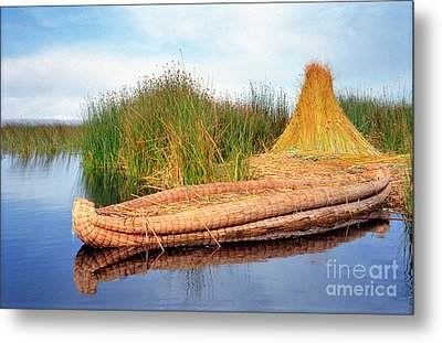 Metal Print featuring the photograph Reed Reflection by Nigel Fletcher-Jones