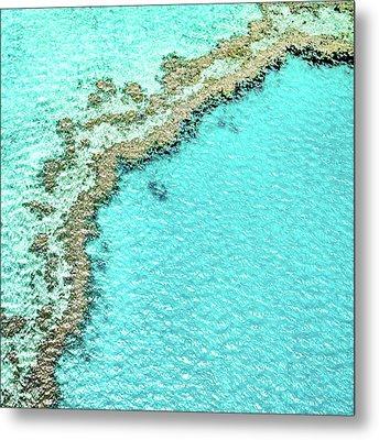 Reef Textures Metal Print by Az Jackson