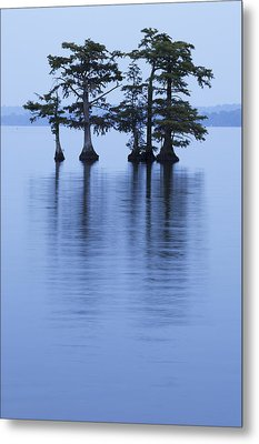 Reelfoot Reflections Metal Print by Eric Foltz