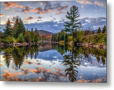 Reflect Metal Print by Mark Papke