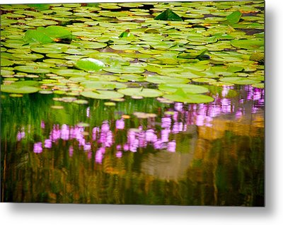 Reflected Flowers And Lilies Metal Print by Paul Kloschinsky