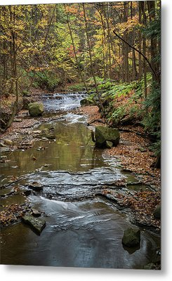 Metal Print featuring the photograph Reflecting Autumn by Dale Kincaid