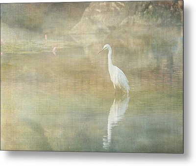 Reflecting Egret Metal Print by Sarah Vernon
