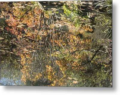Metal Print featuring the photograph Reflecting Gold by Linda Geiger