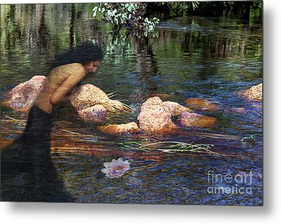 Reflecting On The Lotus Metal Print by Elaine Teague