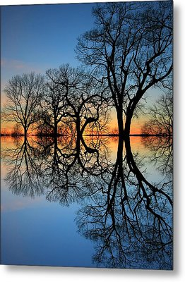 Metal Print featuring the photograph Reflecting On Tonight by Chris Berry