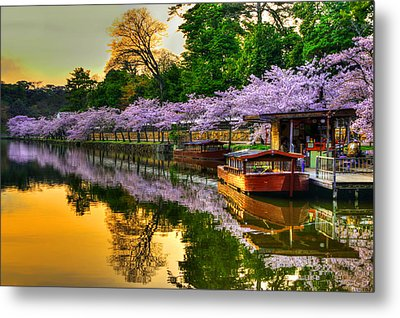 Reflection In Gold Metal Print by Midori Chan