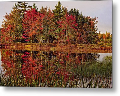 Metal Print featuring the photograph Reflection Island by Kathleen Sartoris