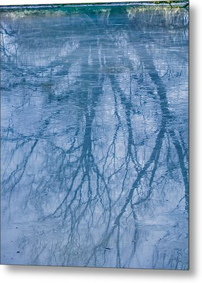 Reflection January 2016 Metal Print by Leif Sohlman