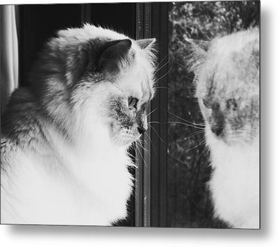 Reflection Metal Print by Karen Stahlros