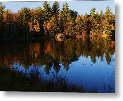 Reflection Metal Print by Lois Lepisto