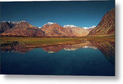 Reflection Metal Print by Marji Lang