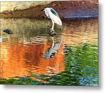 Metal Print featuring the photograph Reflection Of A Bird by Kathy Tarochione