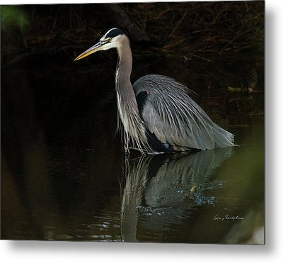 Metal Print featuring the photograph Reflection Of A Heron by George Randy Bass