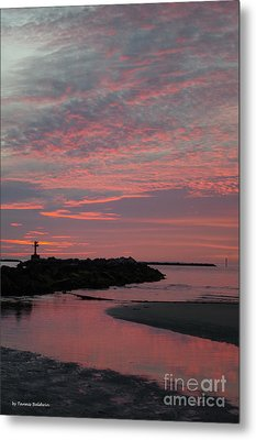 Reflection Of Pink Metal Print