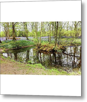 #reflection #water #bluebell Metal Print by Natalie Anne
