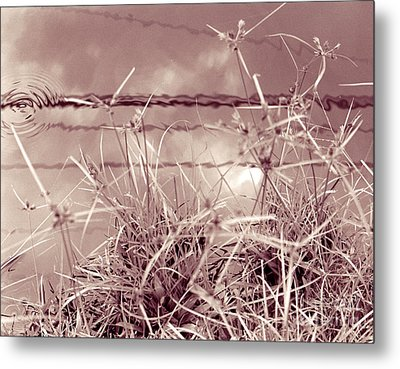 Metal Print featuring the photograph Reflections 1 by Mukta Gupta
