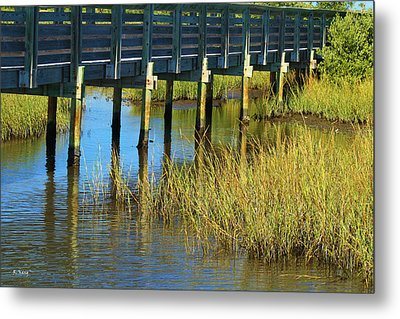 Reflections And Sea Grass Metal Print
