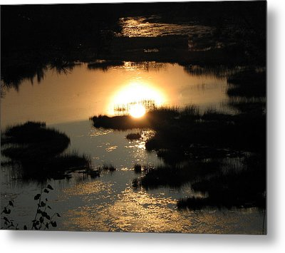 Reflections At Sunset Metal Print by Barbara Yearty