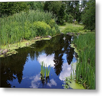 Metal Print featuring the photograph Reflections by Ben Upham III