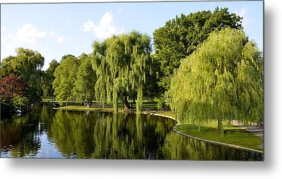 Reflections Metal Print by Corinne Rhode