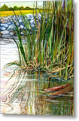 Reflections Metal Print by Elaine Hodges