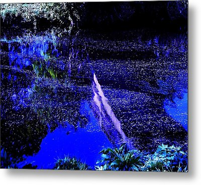 Reflections Metal Print by HweeYen Ong