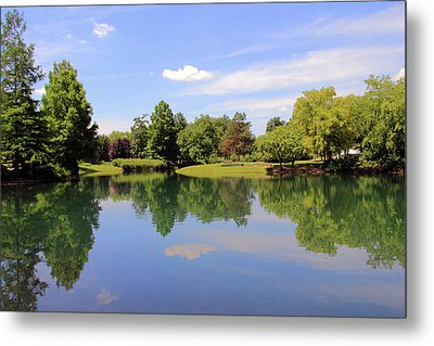 Reflections In A Pond Metal Print