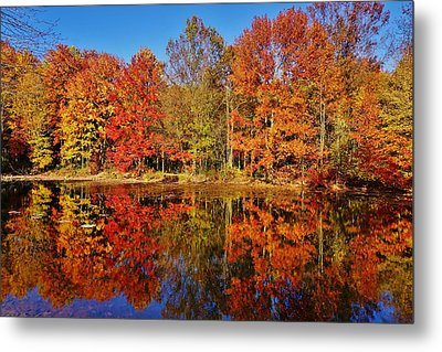 Reflections In Autumn Metal Print