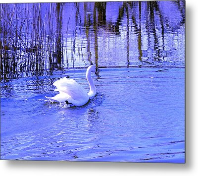 Reflections In Blue Metal Print by Kendall Eutemey
