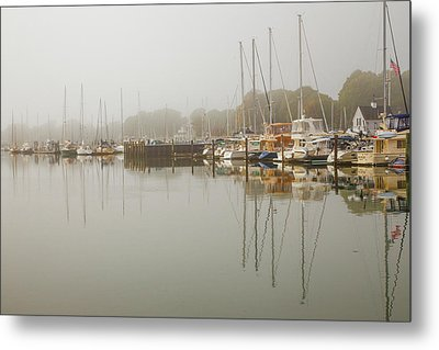 Reflections In The Fog Metal Print