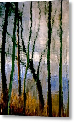 Reflections Of The Forrest Metal Print by Gillis Cone