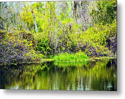 Metal Print featuring the photograph Reflections On A Beautiful Day by Madeline Ellis