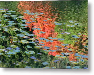 Reflections On A Lily Pond Metal Print