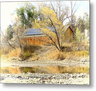 Reflections On A Pond Metal Print