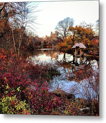 Metal Print featuring the photograph Reflections On A Winter Day - Central Park by Madeline Ellis