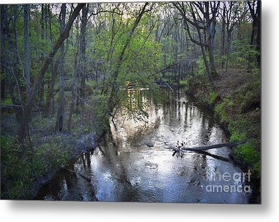 Metal Print featuring the photograph Reflections On The Congaree Creek by Skip Willits