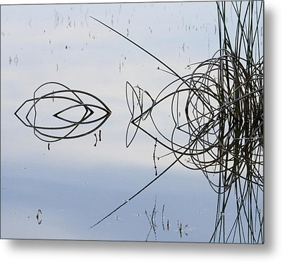 Reflections One Metal Print by Charlie Osborn