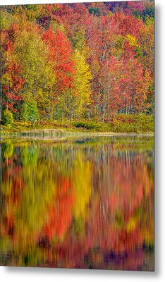 Canaan Valley West Virginia Reflections Metal Print by Rick Dunnuck