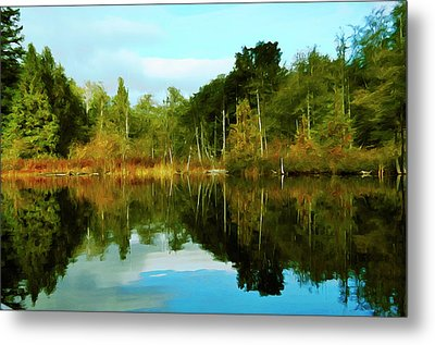 Metal Print featuring the digital art Reflections by Timothy Hack