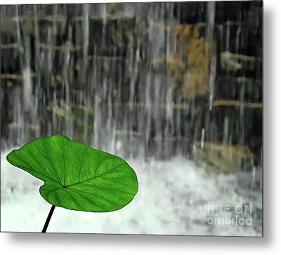 Metal Print featuring the photograph Refreshed By The Waterfall by Sue Melvin