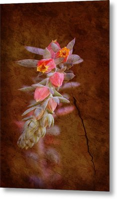 Regrowth Metal Print by Holly Kempe