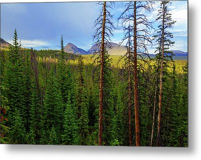 Reids Peak Metal Print by Chad Dutson
