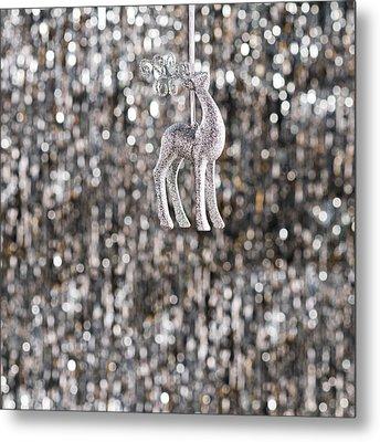 Metal Print featuring the photograph Reindeer  by Ulrich Schade