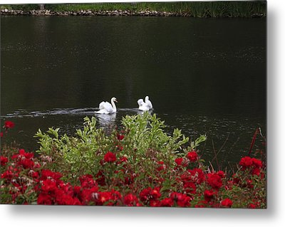 Relax Metal Print by Ivete Basso Photography