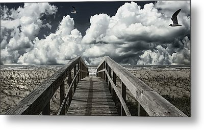 Relaxation Metal Print by Cecil Fuselier