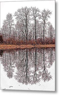 Relections On A Lagoon Metal Print