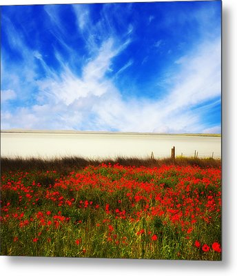 Metal Print featuring the photograph Remember Summer by Philippe Sainte-Laudy