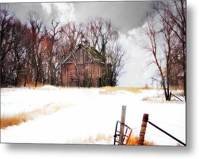 Metal Print featuring the photograph Remember When by Julie Hamilton