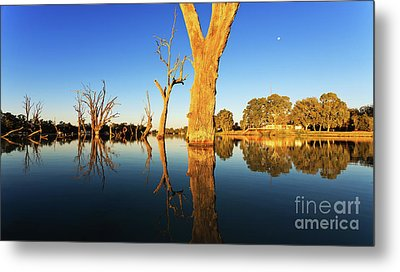 Metal Print featuring the photograph Renamrk Murray River South Australia by Bill Robinson